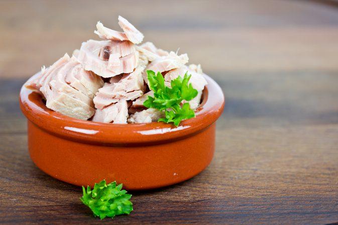 ton-baligi-protein