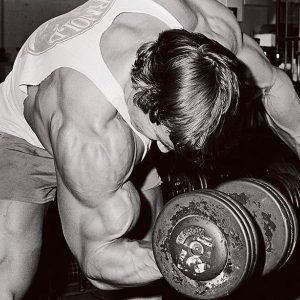 arnold-concentration-curl-arm-workout