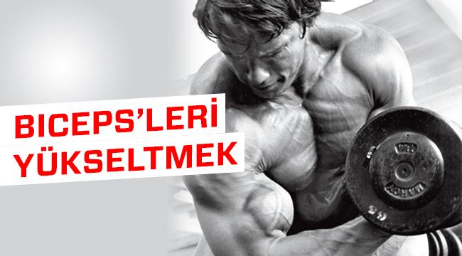 bicepsler