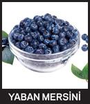 meyve1