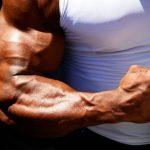 forearm-exercises-workouts_0