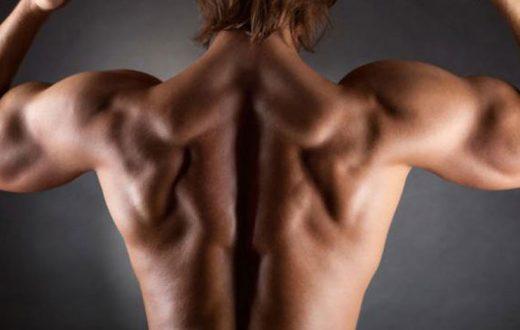 back-workout_3