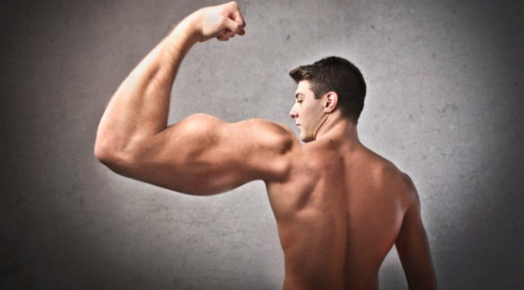 biceps imbalance_2