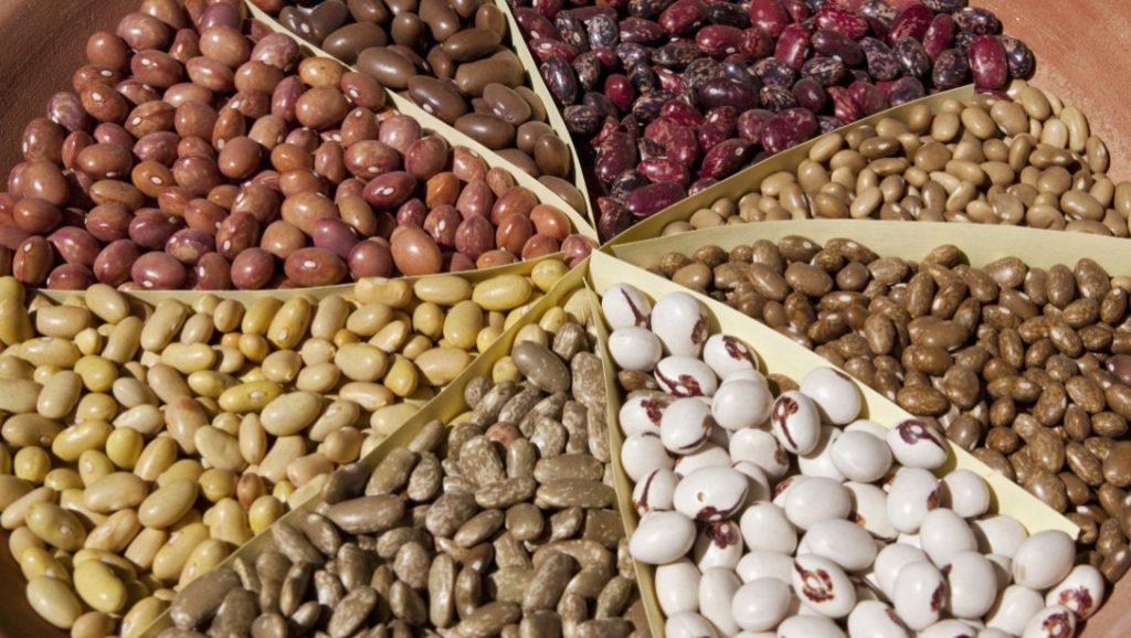 beans-promo