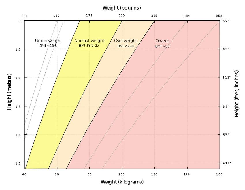 ideal-kilo-nasil-hesaplanir