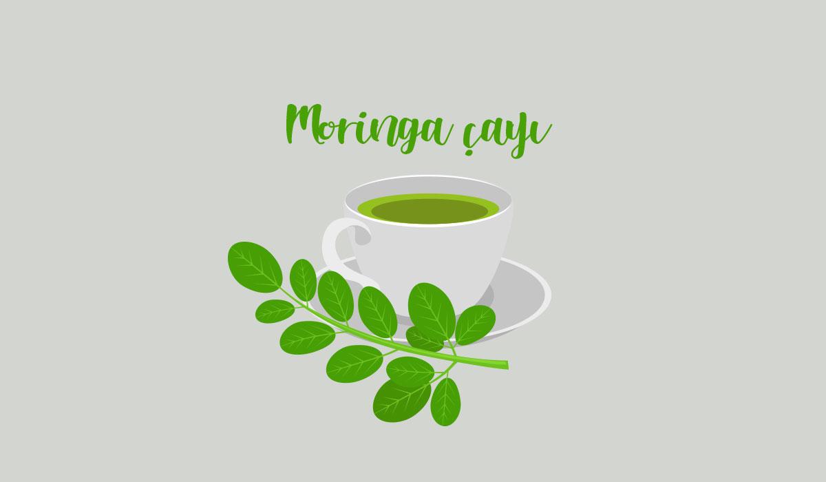 moringa-cayi