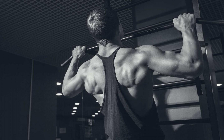 full-body-egzersizleri