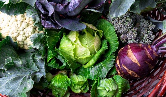a-vitamini-nedir-ne-ise-yarar-eksikliginde-neler-gorulur-hangi-besinlerde-bulunur