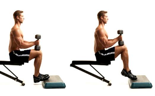 seated-calf-raises